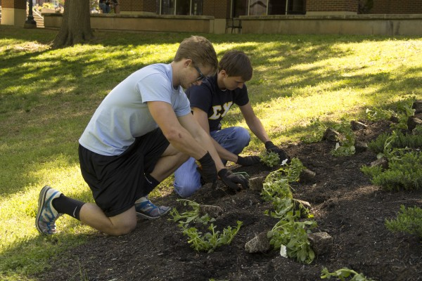 "aul Wofford, sophomore computer science major, and Alex Nelkov, sophomore biology major, plant flowers at the annual ""Plant the Campus Red"" volunteer event on campus to spread school pride and commemorate Earth Day on Thursday, April 25. Stephen Kemp 