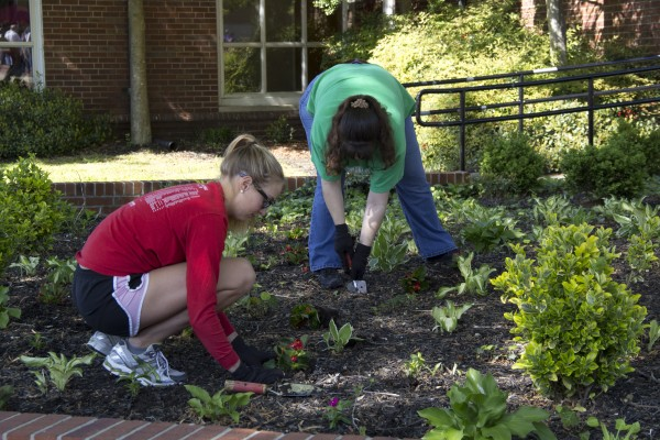 "Holley Batey, senior accounting major, and Elizabeth Stonerock, Veterans Affairs financial aid counselor,  planting flowers at the annual ""Plant the Campus Red"" event. Stephen Kemp 