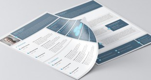 Material-Style-Free-Professional-Resume-With-Cover-Letter