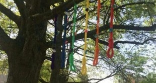 Six rainbow-colored nooses were found on campus the week of April 18. Photo credit: Contributed Photo